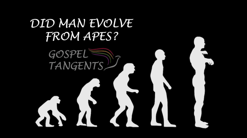 Did Man evolve from apes, or from the dust of the earth as the Bible says? Can/should these be reconciled?